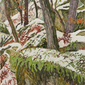 Sous-bois sous la neige